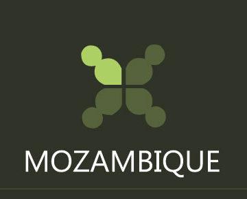 web_image_mozambique_460x291px_v1_01